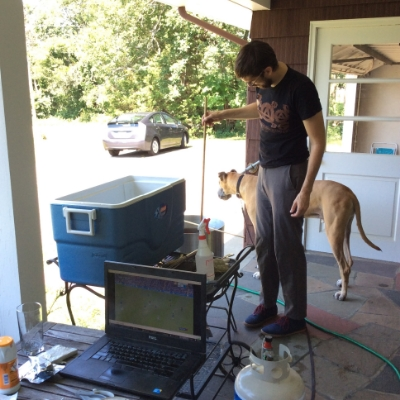 Things aren't so bad when you're vegan, you can still brew beer.