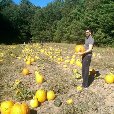 Pastured pumpkins >>>>>>> pastured beef