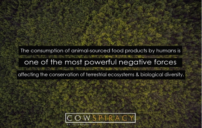 The above quote is from Science of The Total Environment, Volume 536, 1 December 2015, Pages 419–431. The documentary Cowspiracy sums up a lot of the science and helps viewers understand why no one is talking about the elephant in the room, including environmental groups.