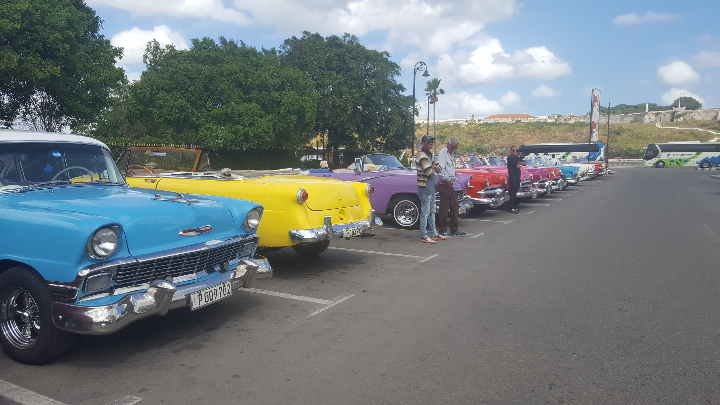 A line up of old cars in Old Havana and their drivers, waiting for customers. This isn't even a car show, just a regular day in Havana!