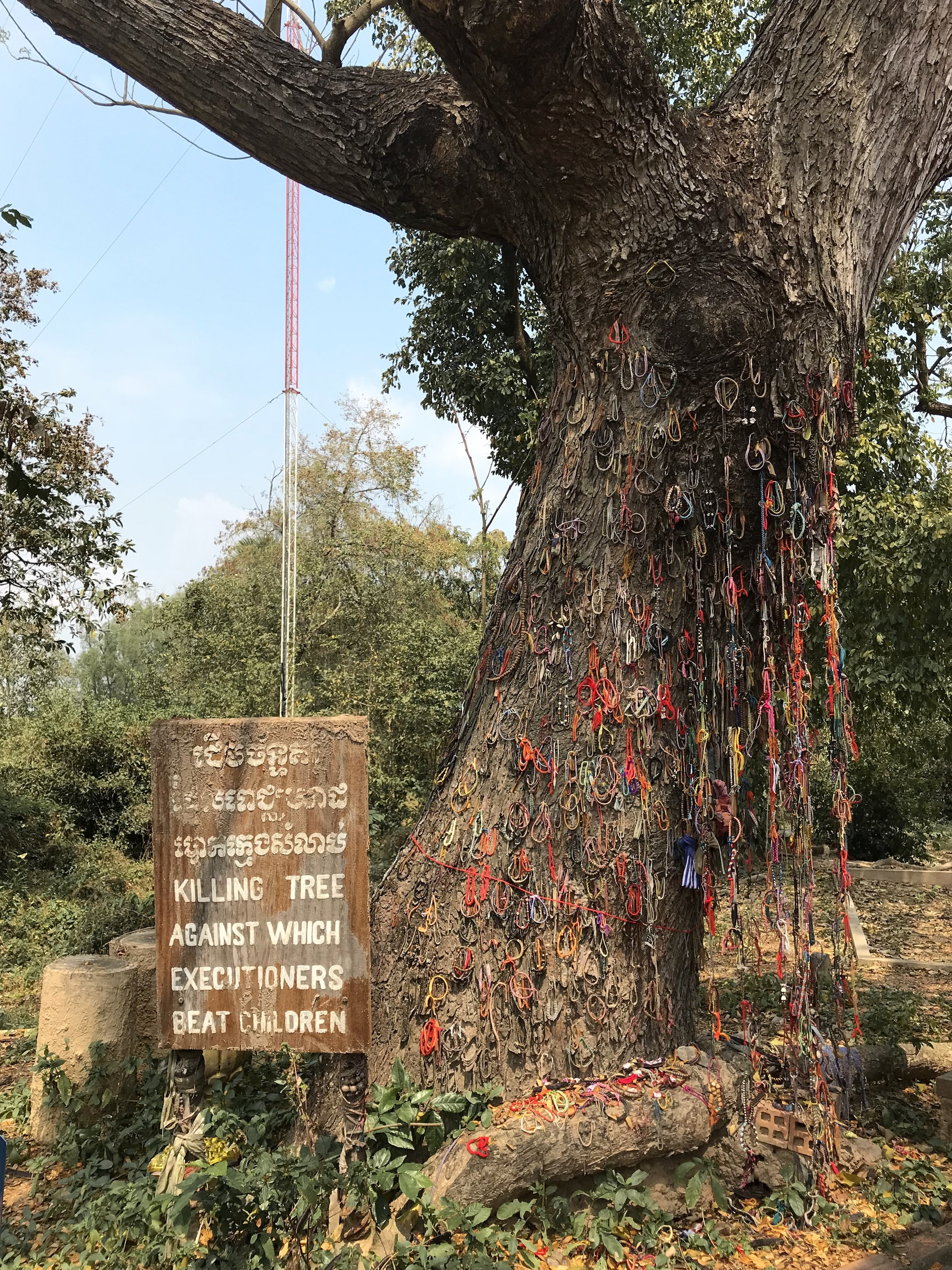The Killing Tree that was used to smash babies' heads against before tossing their bodies into mass graves.
