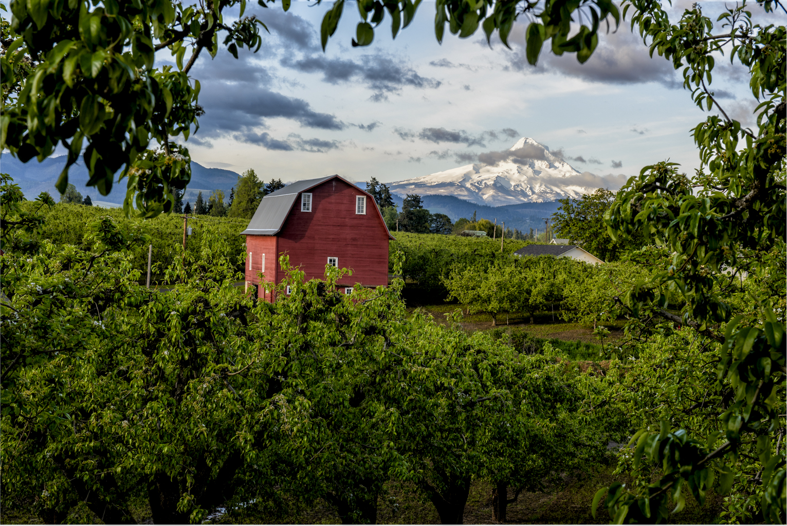 That Red Barn