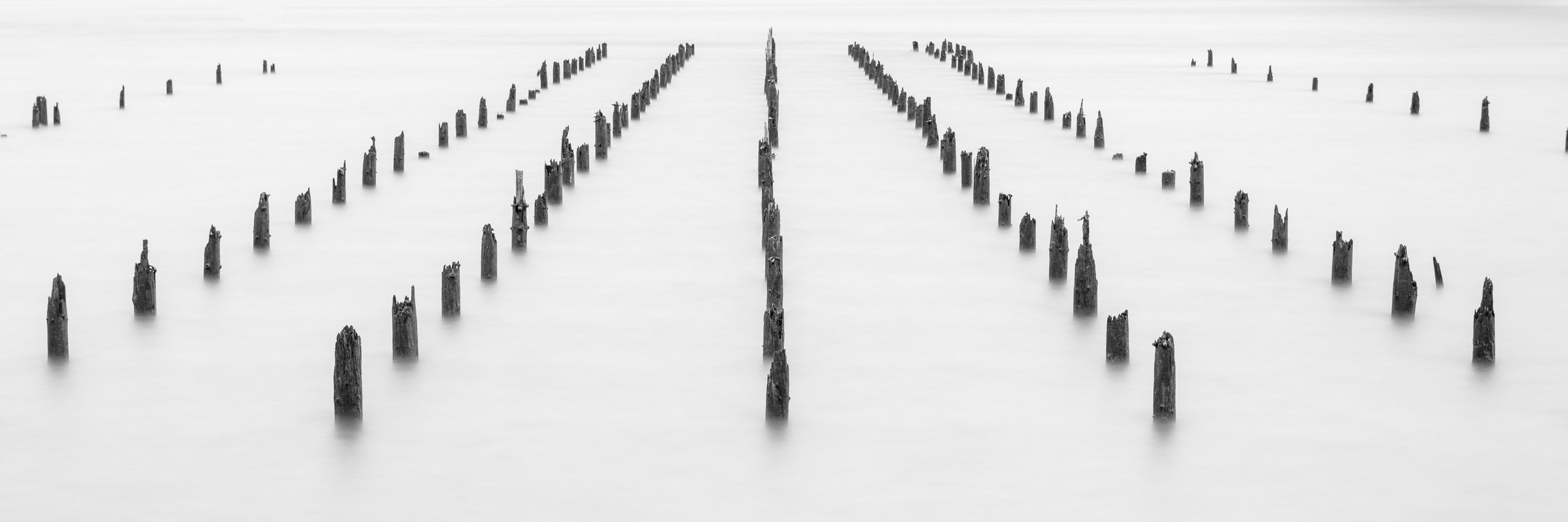 Forgotten Piers of the Pacific Northwest 1  Size: 20 X 60 inches  Hahnemuhle Fine Art Inkjet Print  Available as limited edition of 100 prints
