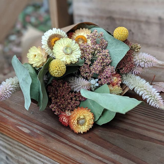 Posting twice in one day because I am so in love with these everlasting bouquets and bud vases. The weather called me to get started on these and I'm so glad it did. You'll be seeing them at the handful of markets I'm doing this holiday season. I'm also open to wholesaling them to local retailers! Shoot me a message if you're interested. You can pick up the first 4 bouquets during public hours (12-2) tomorrow at @rivercityflowerexchange! AND I'm down to take special orders for these. Basically just trying to spread the dried flower gospel wherever possible. 🍁💐🥰