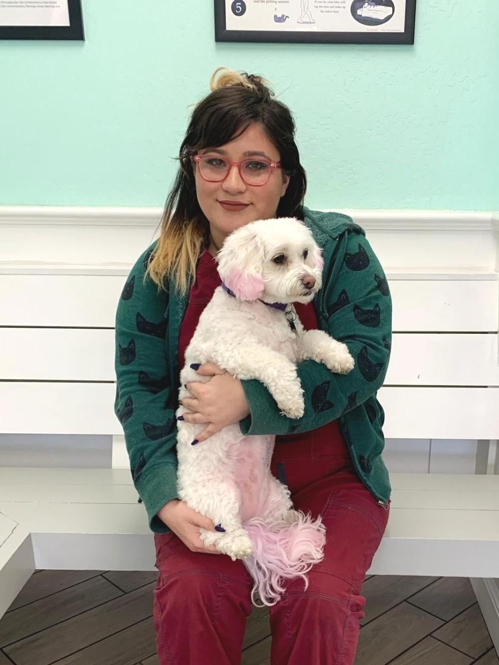 Support Staff — San Jose Animal Hospital