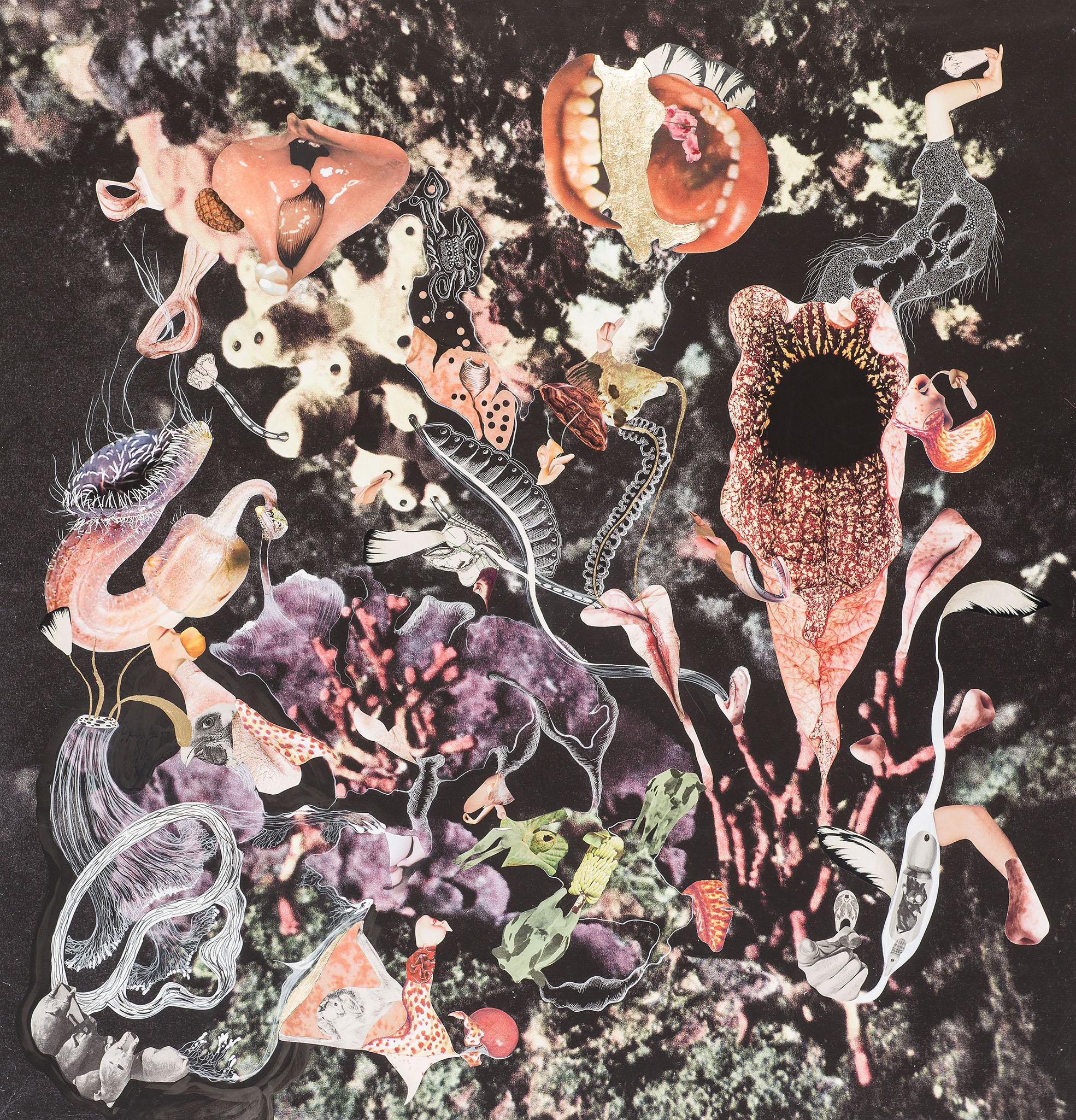 Naturaleza Cosmética    Collage, lápiz, hojilla y tinta sobre impresión giclée 109 x 109 cm