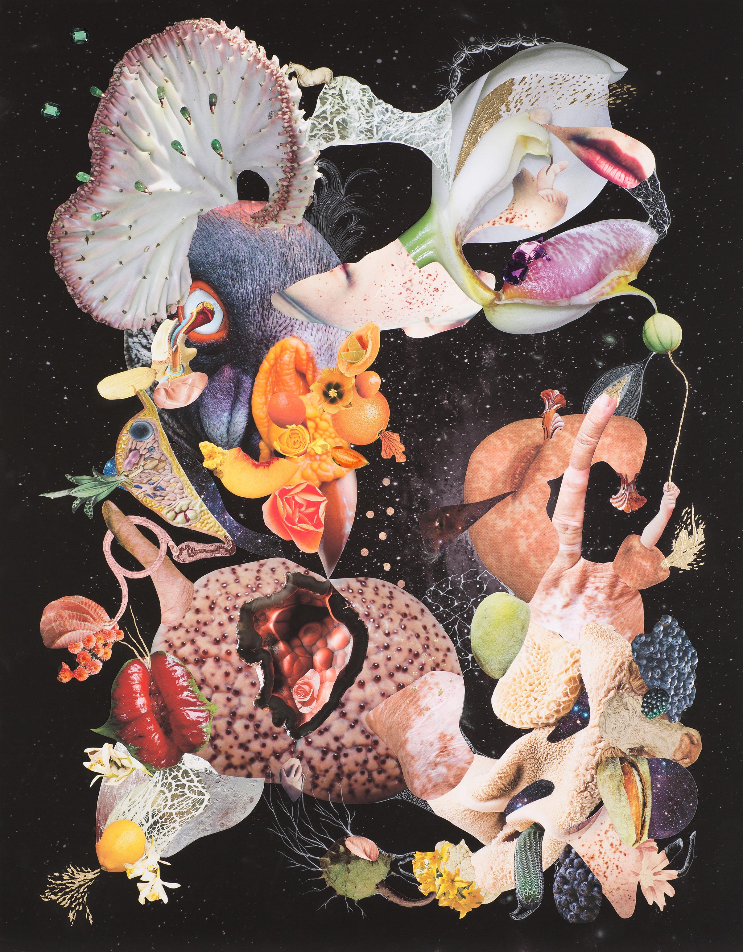 Naturaleza Cosmética    Collage, lápiz y hojilla sobre impresión giclée 90 x 70 cm