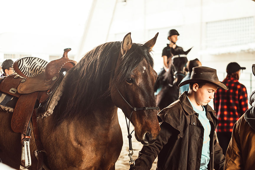 Minnesota-Horse-Expo-Alyssa-Smolen-Photography-Friesian-Mare.jpg