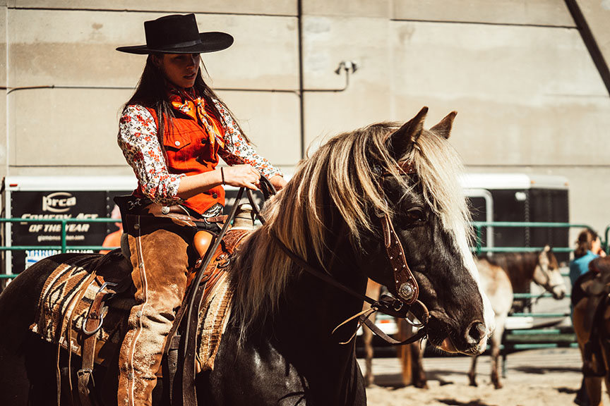 Minnesota-Horse-Expo-Alyssa-Smolen-Photography-R-Squared-Ranch-Rocky-Mountain-Horse-1.jpg