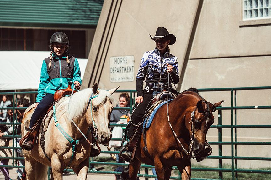 Minnesota-Horse-Expo-Arabian-Horse-Alyssa-Smolen-Photography.jpg