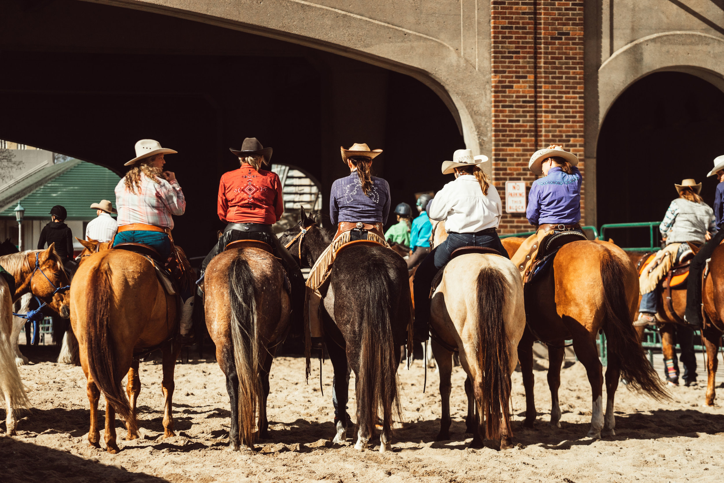 Minnesota-Horse-Expo-Back-Of-Horses-Alyssa-Smolen-Photography.jpg