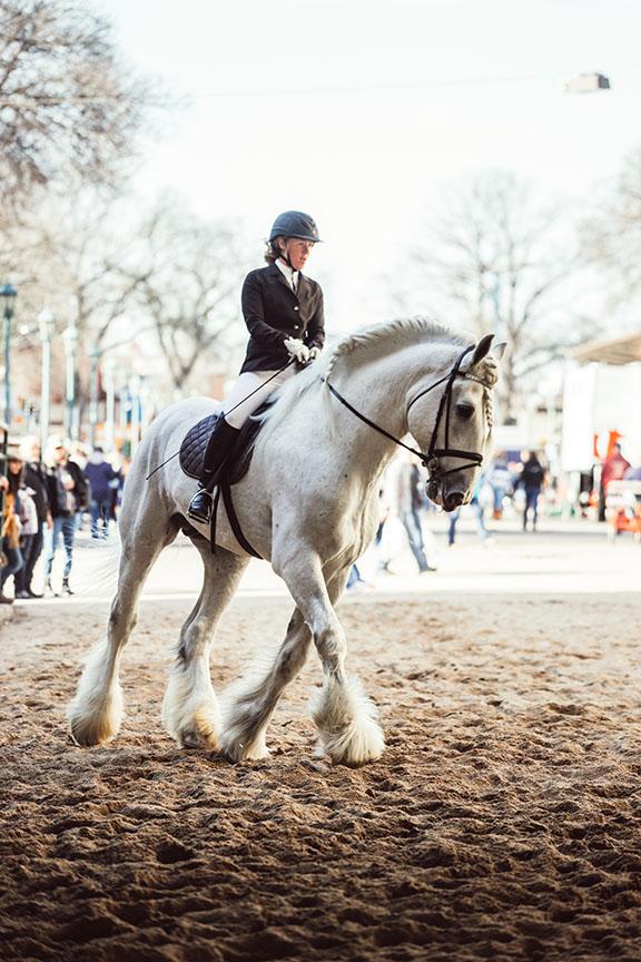 Minnesota-Horse-Expo-Jenson-Shires-Alyssa-Smolen-Photography.jpg