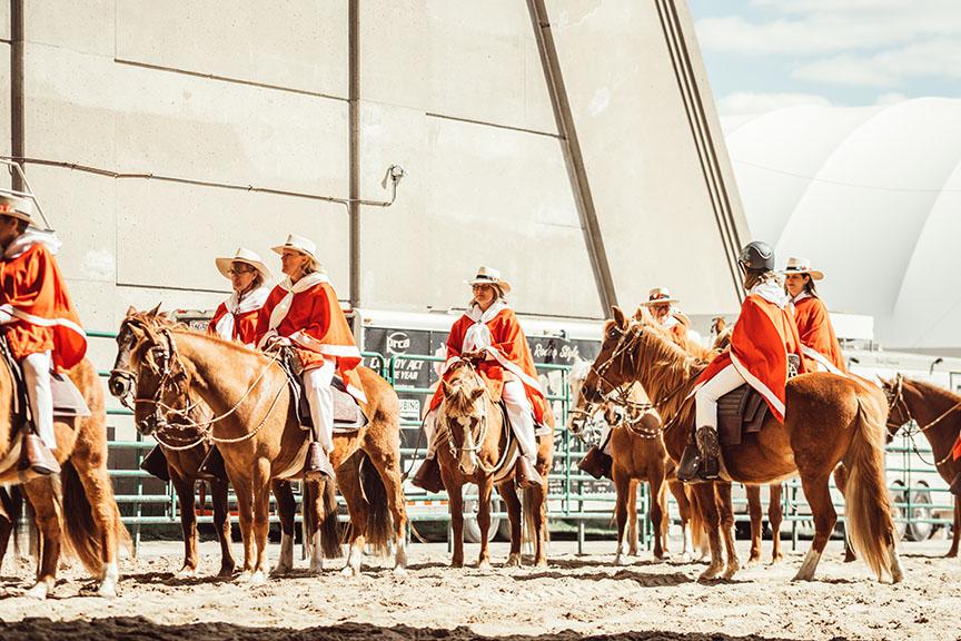 Minnesota-Horse-Expo-Paso-Fino-Alyssa-Smolen-Photography.jpg