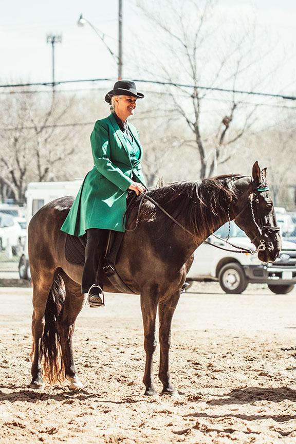 Minnesota-Horse-Expo-Standardbred-Horse-Alyssa-Smolen-Photography.jpg