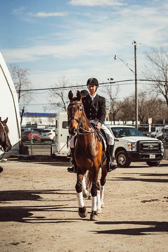Minnesota-Horse-Expo-Standardbred-Horse-Alyssa-Smolen-Photography-1.jpg