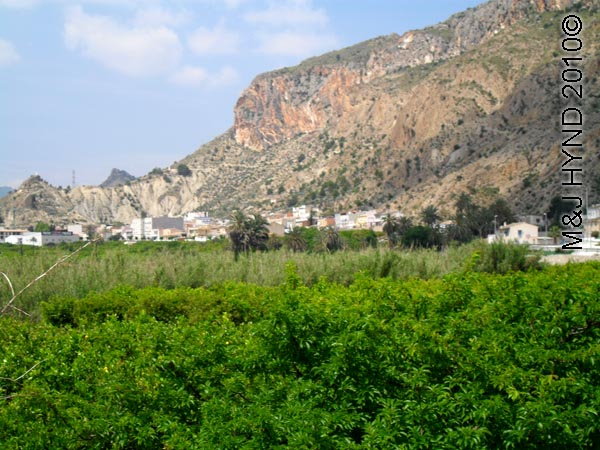 spain Archena Murcia Spa Resort town countryside orange groves, olive groves, craggy mountain