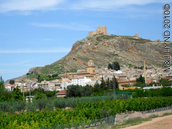 spain Jumilla, Murcia, oramge grove, olive grove, town, castle on promontory