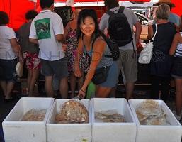Takapuna Auckland Farmers Markets NZ pita bread at Turkish stall, Greece flatbread