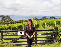 Waiheke Island, sloping grapevines, Waitemata Harbour, Sculpture on the Gulf