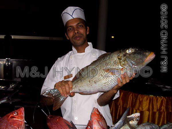 get a fisherman to be your chef too: Sun Island, Maldives