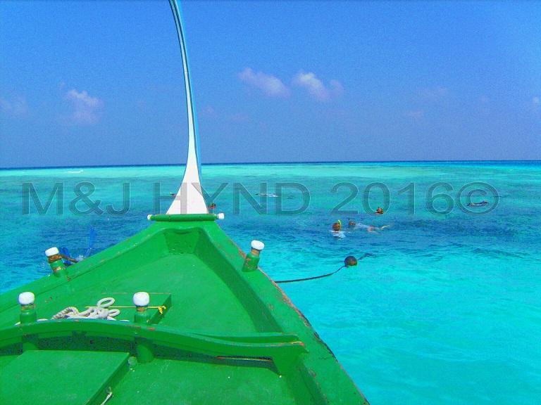 snorkelling in pristine waters, Sun Island, Maldives
