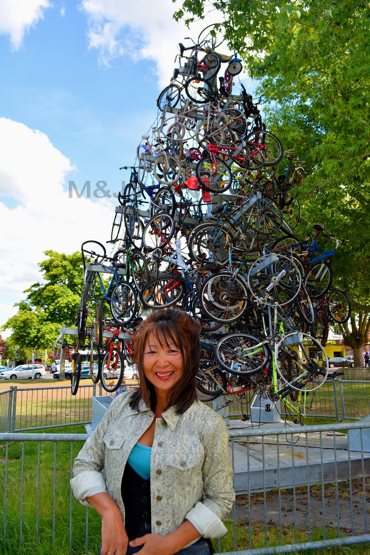 Bicycle Tree at the Arts Village, Rotorua, NZ