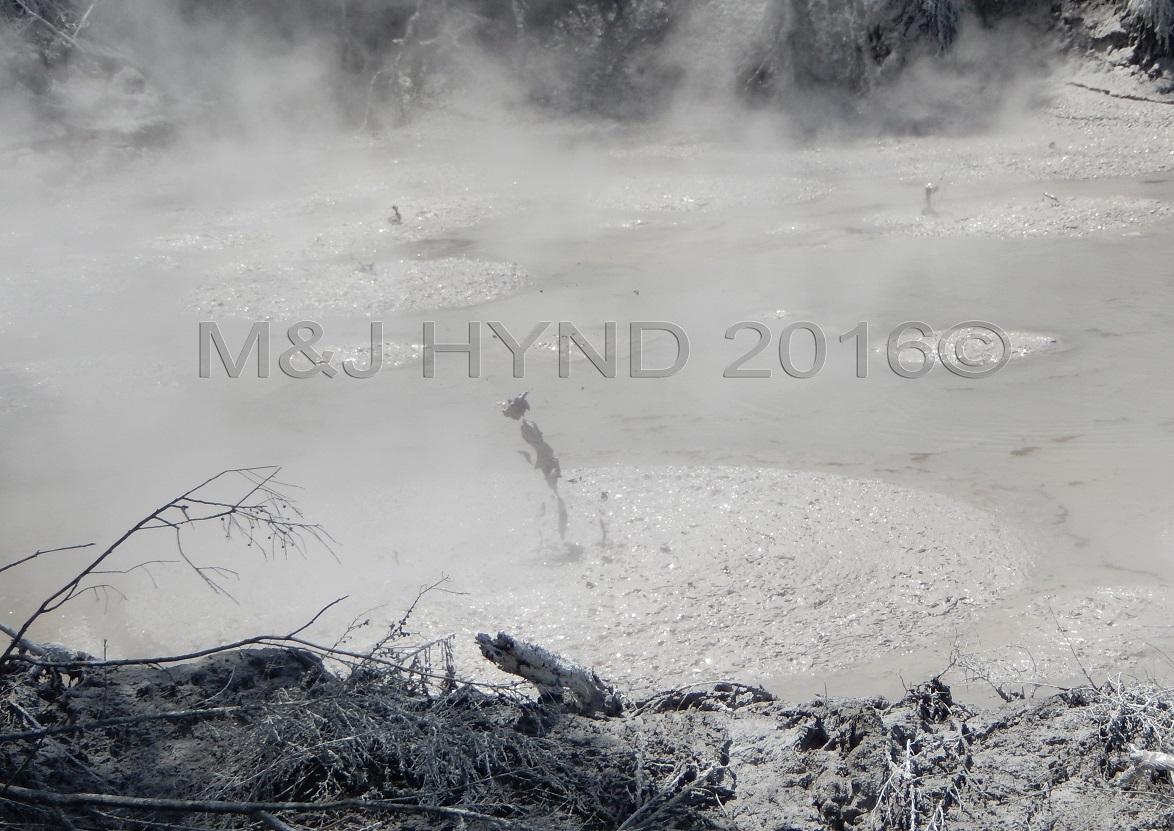 bubbling and burping mud pools, Wai-o-tapu Thermal Wonderland, Rotorua, NZ