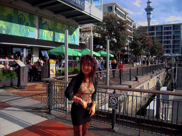 Viaduct Harbour restaurants ; SkyTower in the background, Auckland, NZ