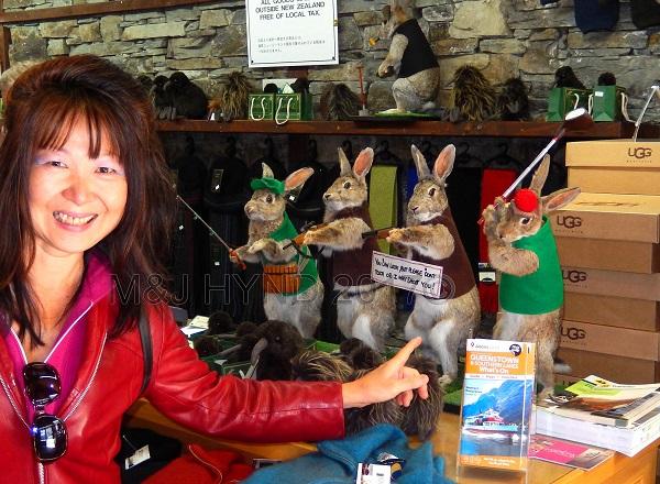 Stuffed rabbits, gift shop, Queenstown, NZ