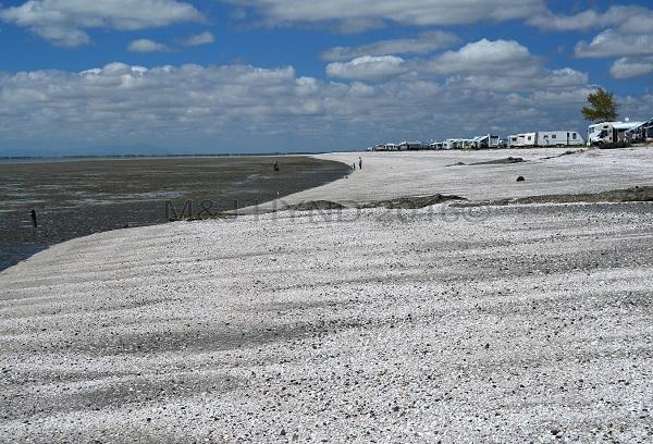 shelly beach, campervan spot, Miranda, NZ