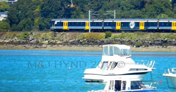 Trains so close to floating boats, Orakei, Auckland, NZ