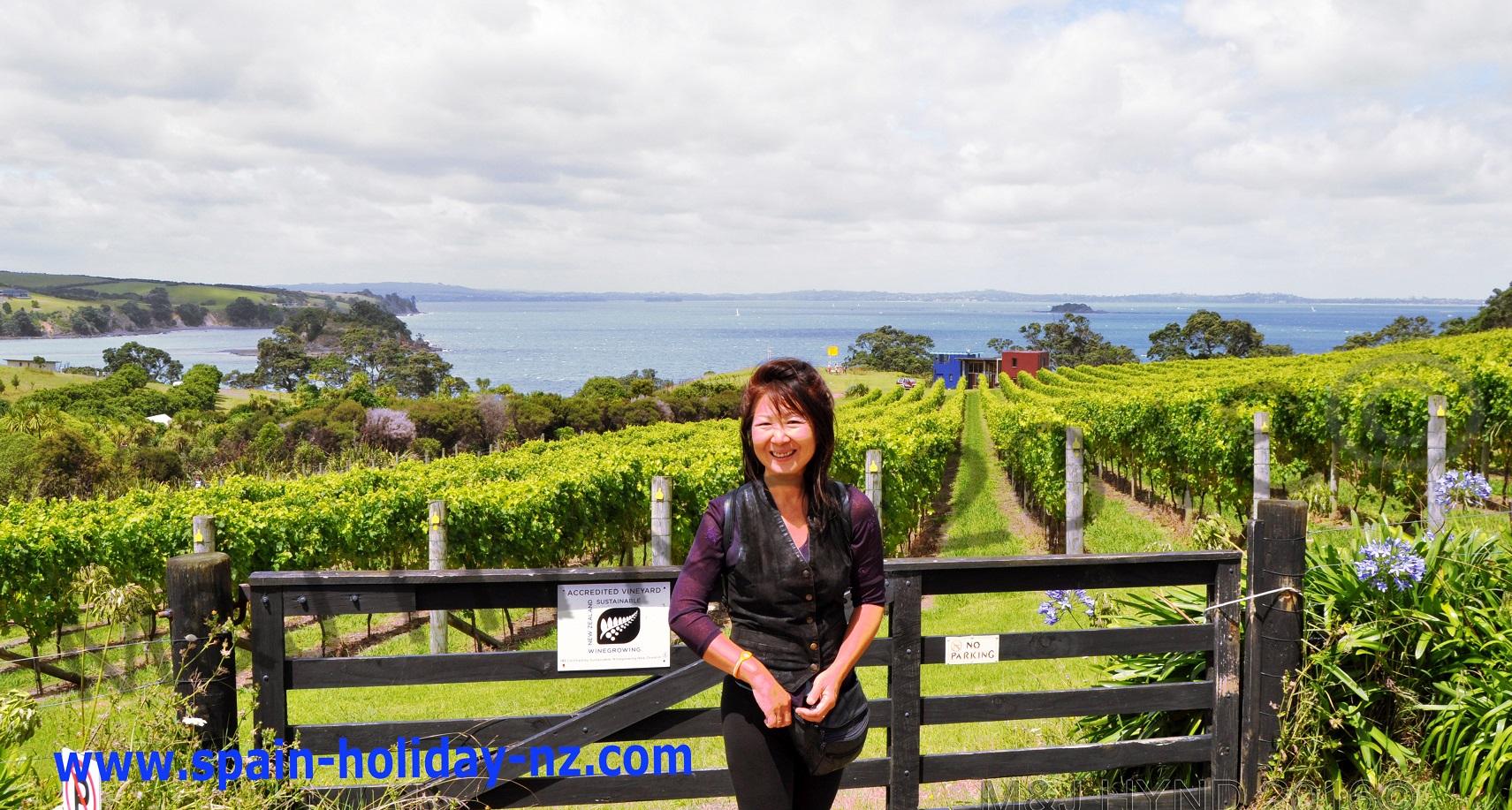 …one of many vineyards on waiheke island, near auckland