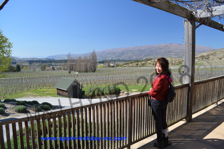 Felton road winery