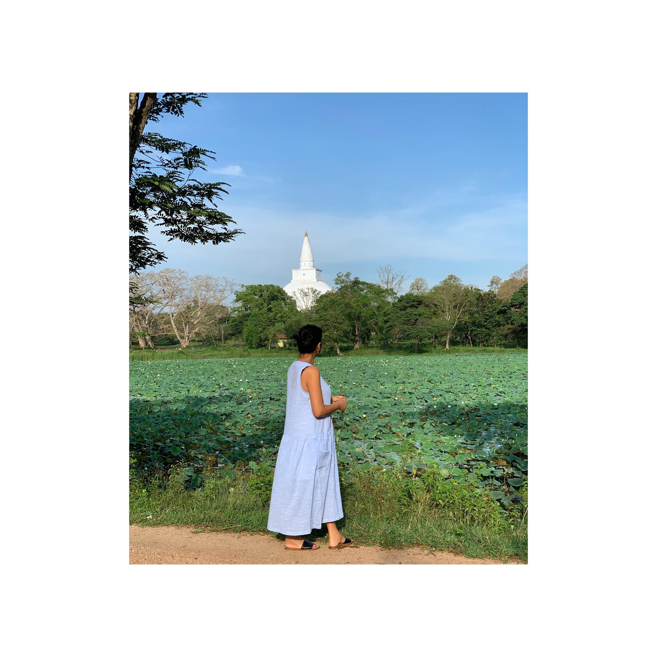 Travel Sri Lanka Ancient city of Anuradhapura_Sahana Byron Bay .jpg