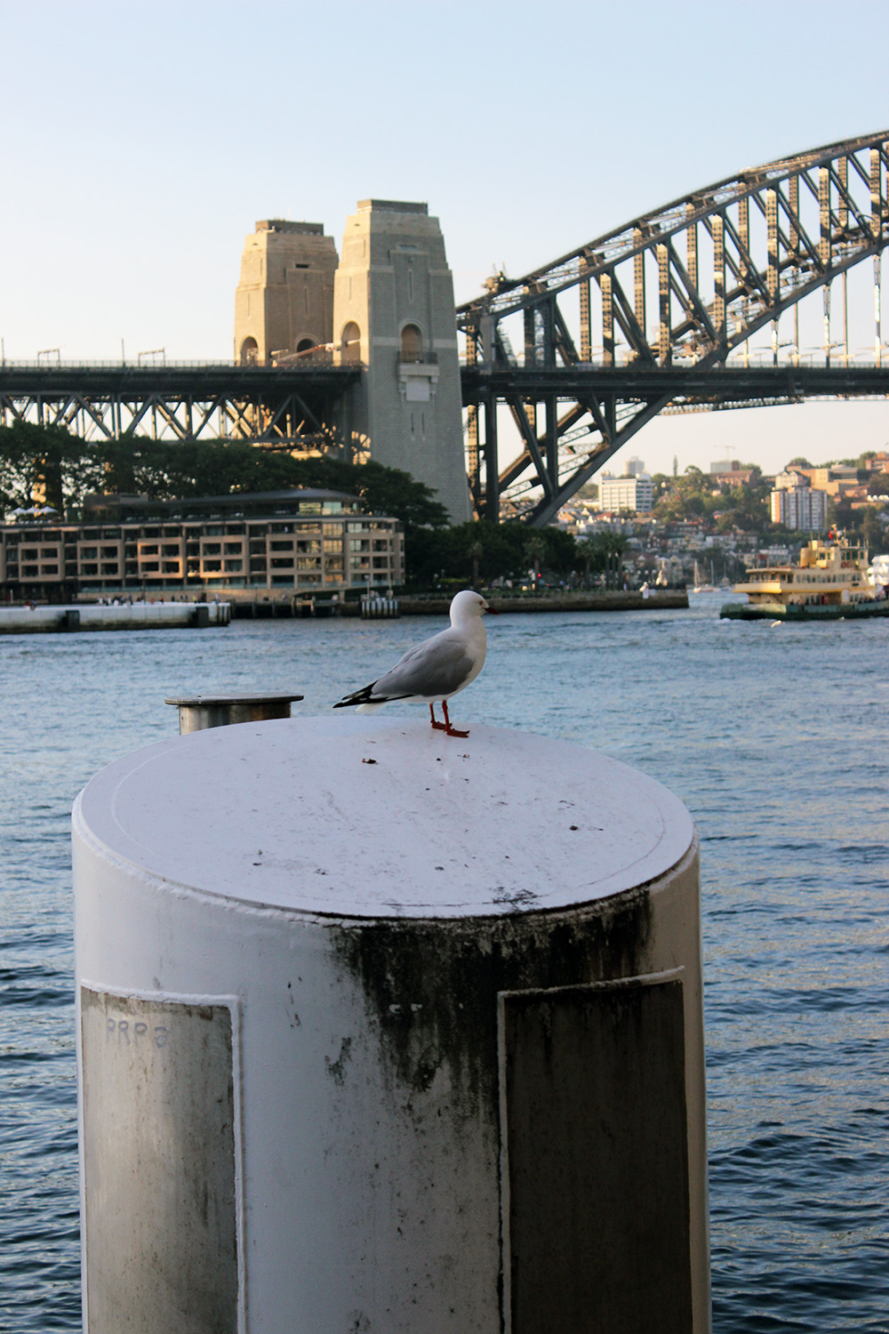 Travel Guide: Sydney // Miss Sweet Nothings