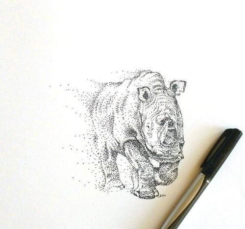 sudan rhino with pen.jpg