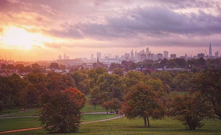 Primrose Hill - Great sunset view from the top of the hill.Nearby: Jewish Museum London