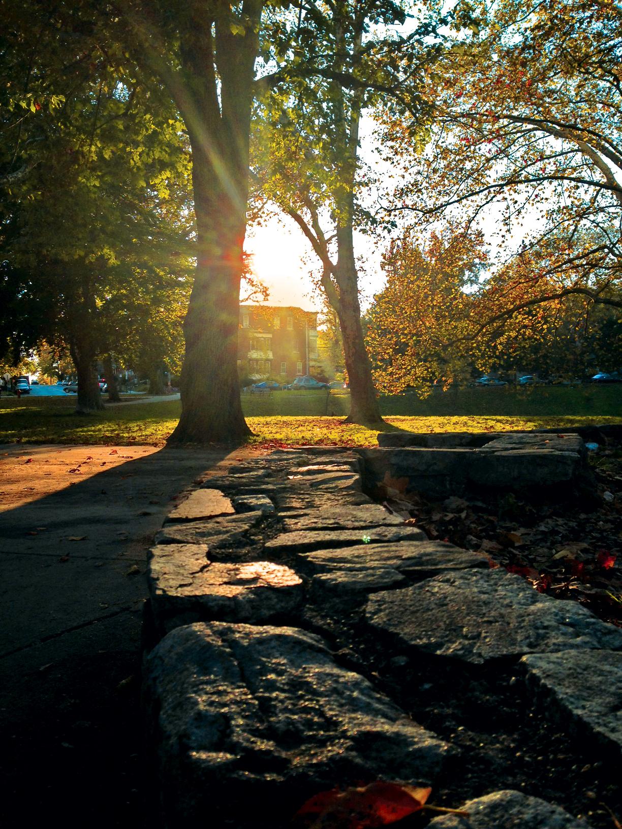 Clark Park , Philadelphia - October 21, 2013