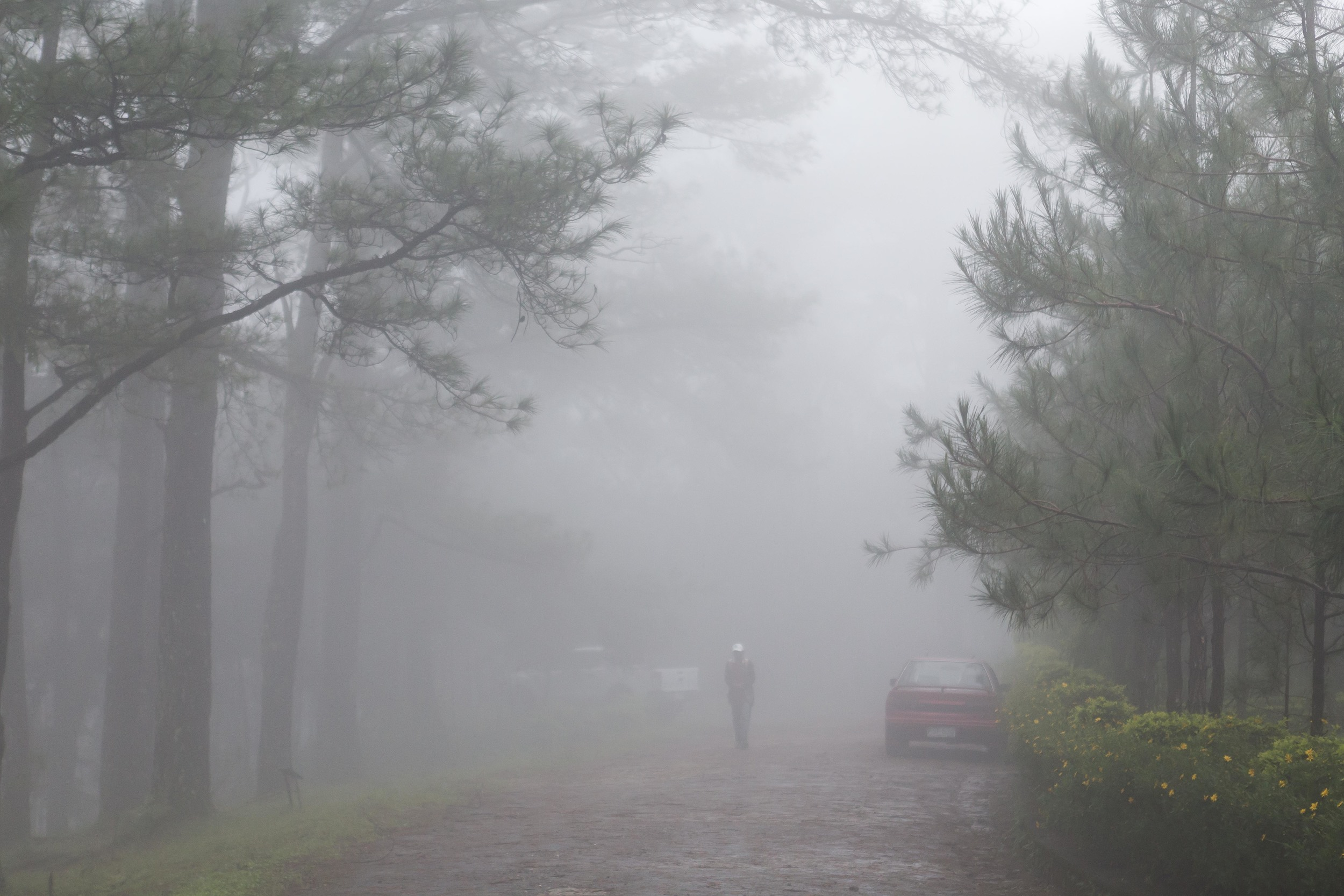 Rare moments when we experience thick fog!