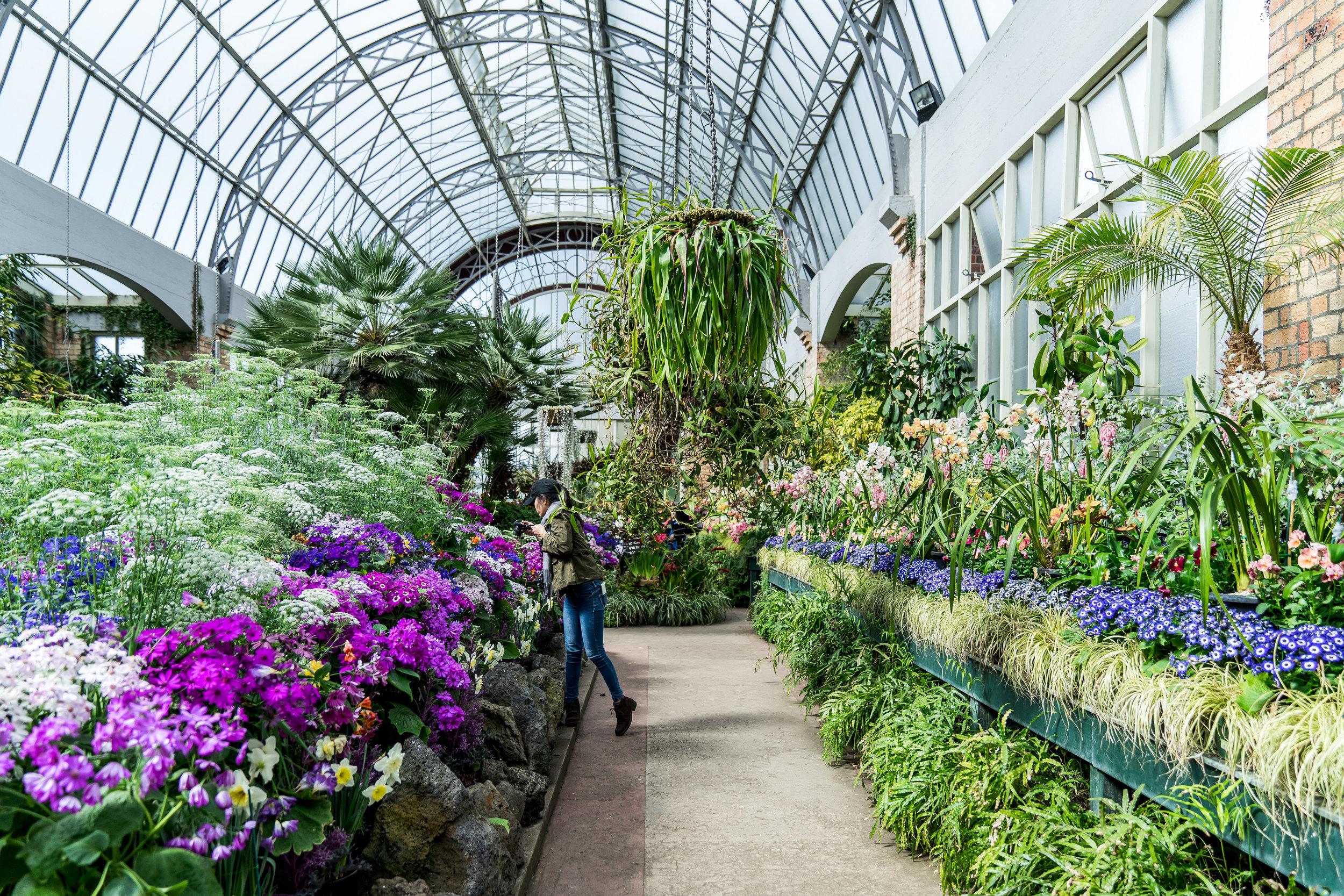 Wintergardens Auckland Interior 2