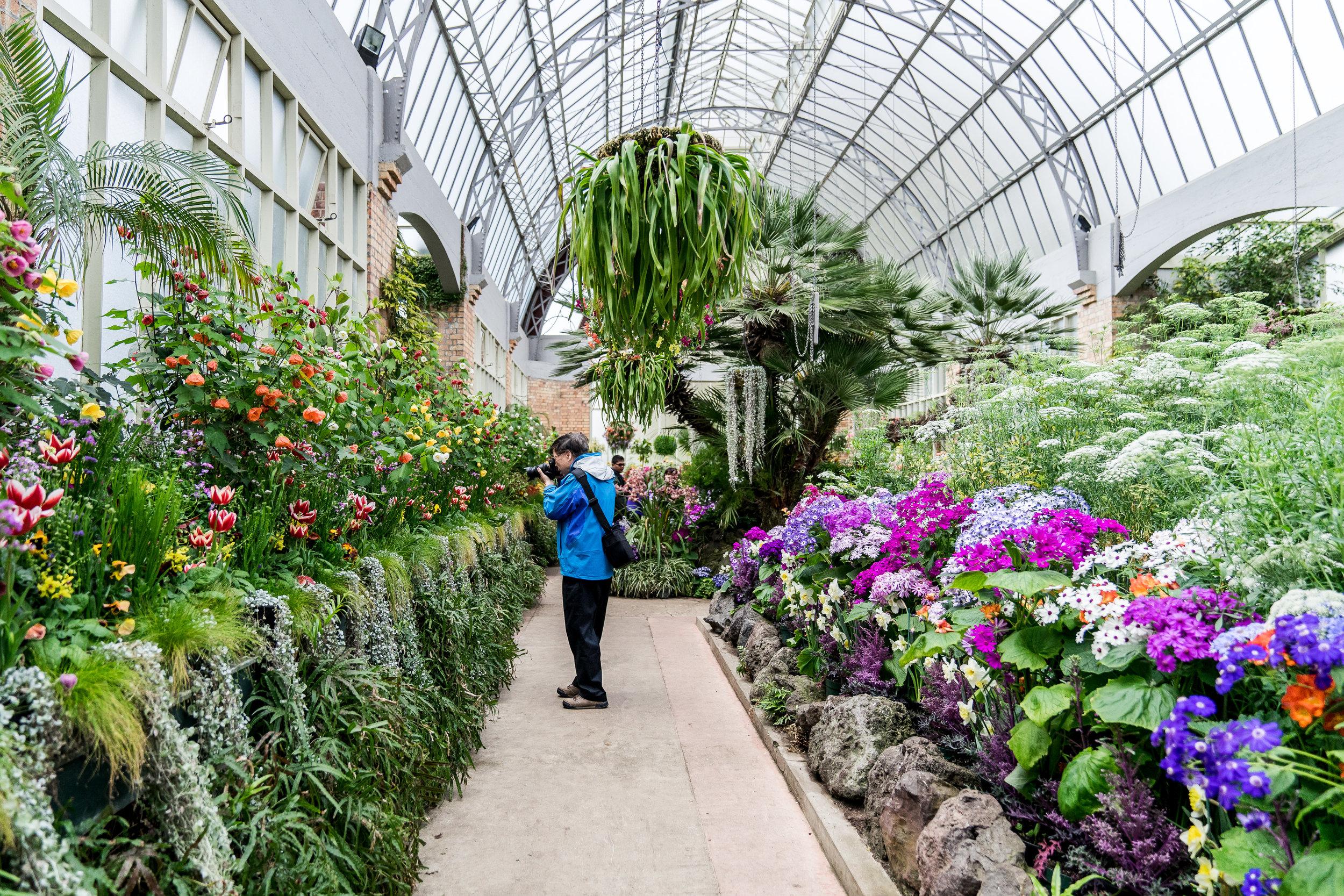 Wintergardens Auckland Interior 1