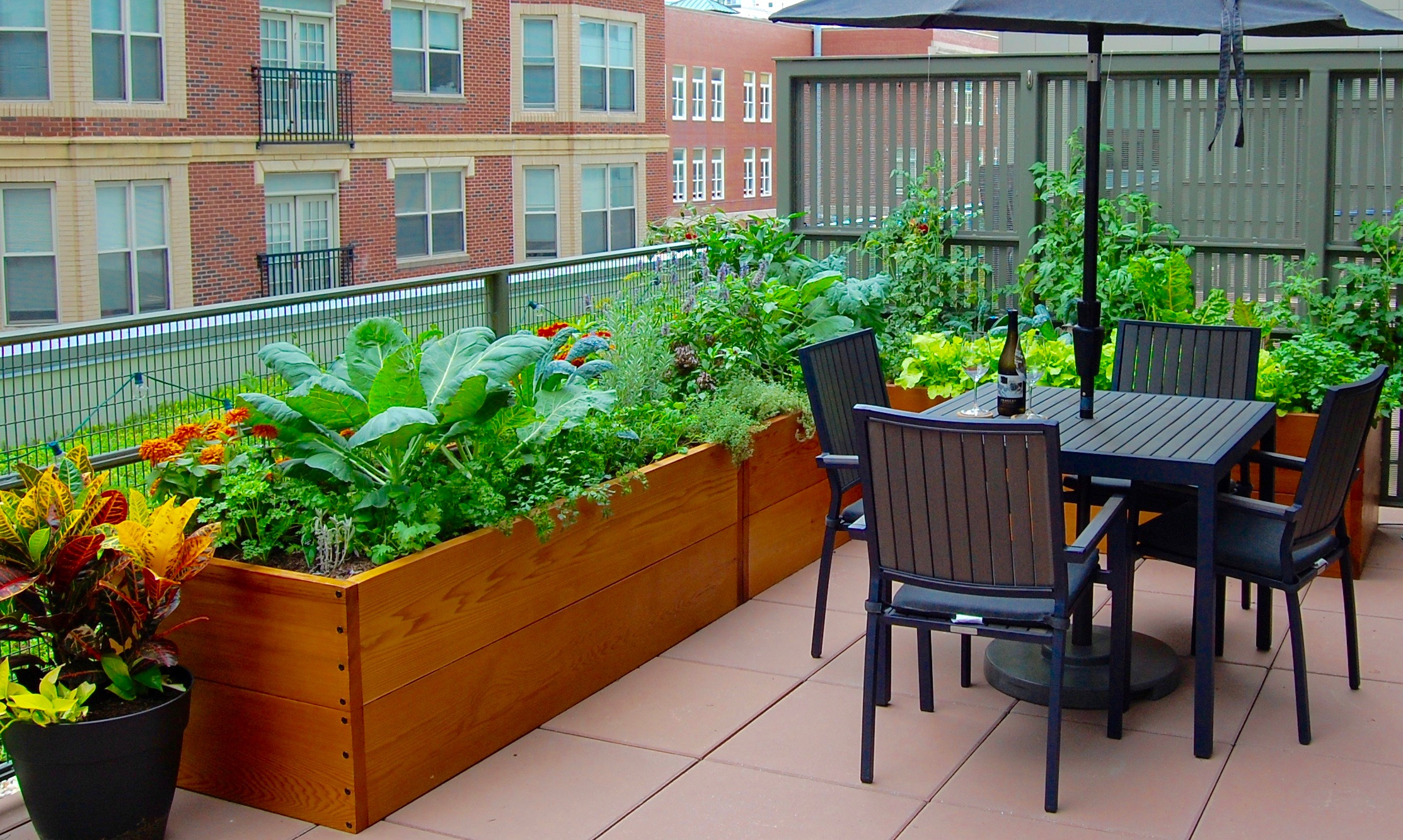 Cedar Raised beds.jpg