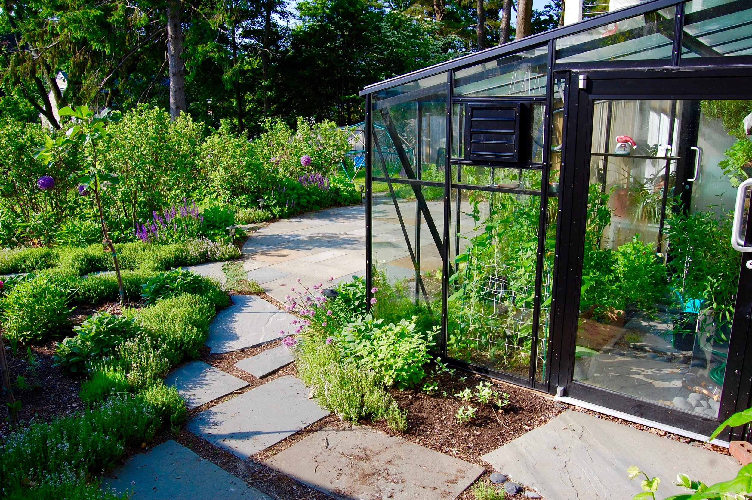 Bluestone patio, stepping stones, edible garden, greenhouse.jpg