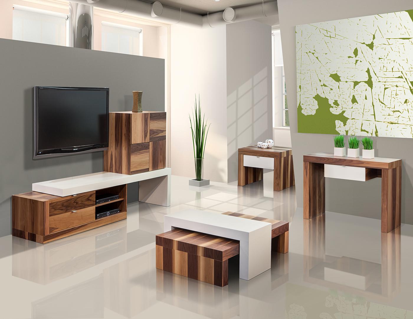 TV 5.jpg