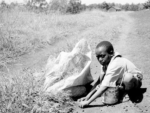 U. R. Romano / Kenya