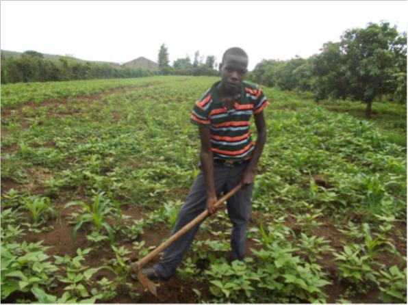 Samson Masinde helping his grandmother on the farm © ANPPCAN