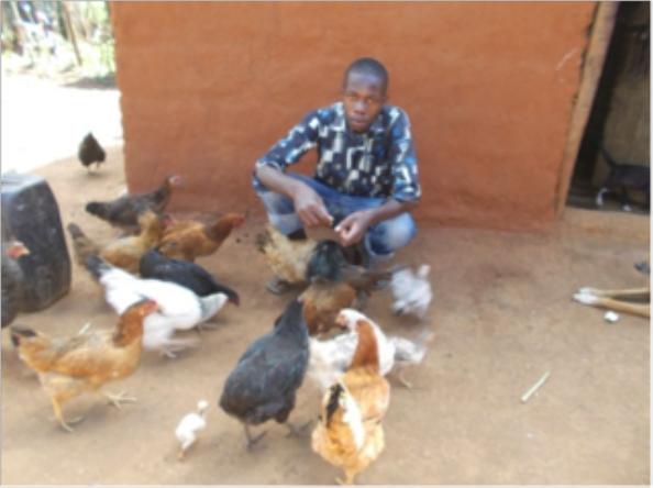 Samson feeding chickens © ANPPCAN