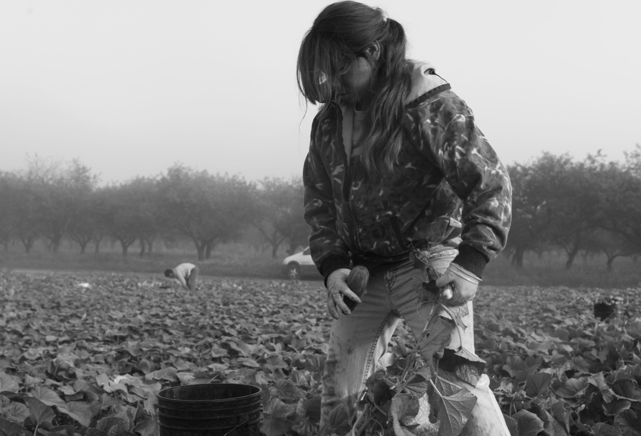 USA: HARVEST WORKERS - These stills were taken during production of The Harvest (La Cosecha),a 2010 documentary directed by our late friend and collaborator, Robin Romano. ©Robin Romano