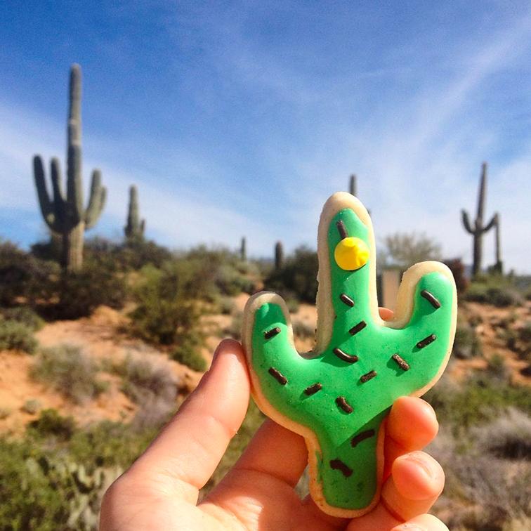 cactus-cookies.jpg