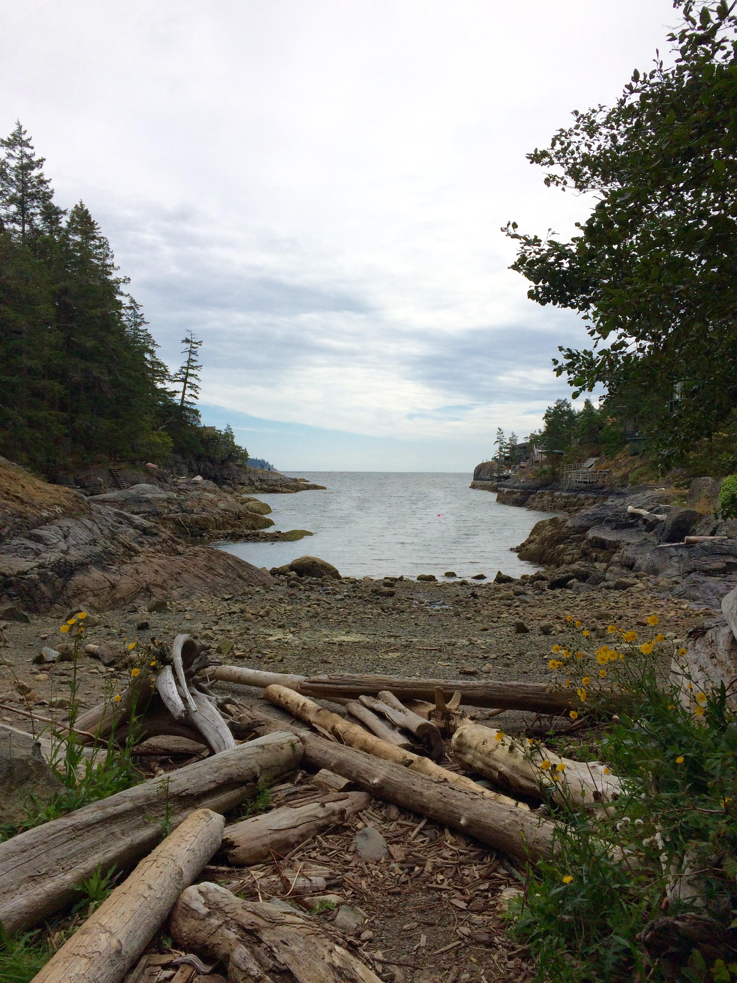 Smuggler's Cove